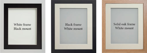 available frames from Pawesome