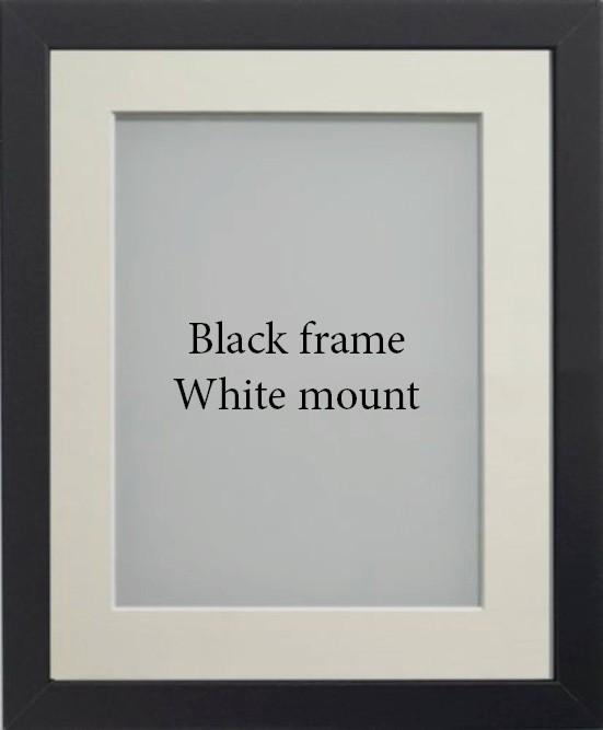frame options2