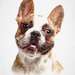 French Bulldog - pawesome art