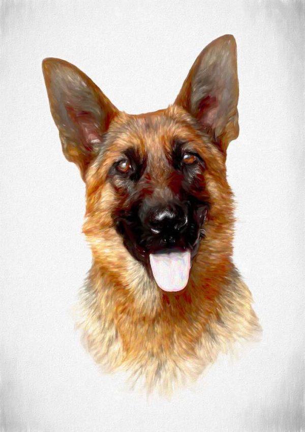 german shepherd - pawesome art